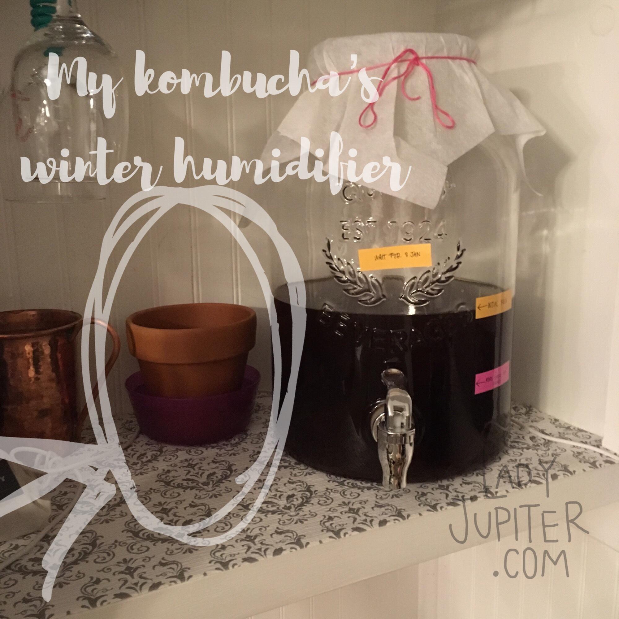 Lady Jupiter makes her first fermented tea #milblogger #kombucha