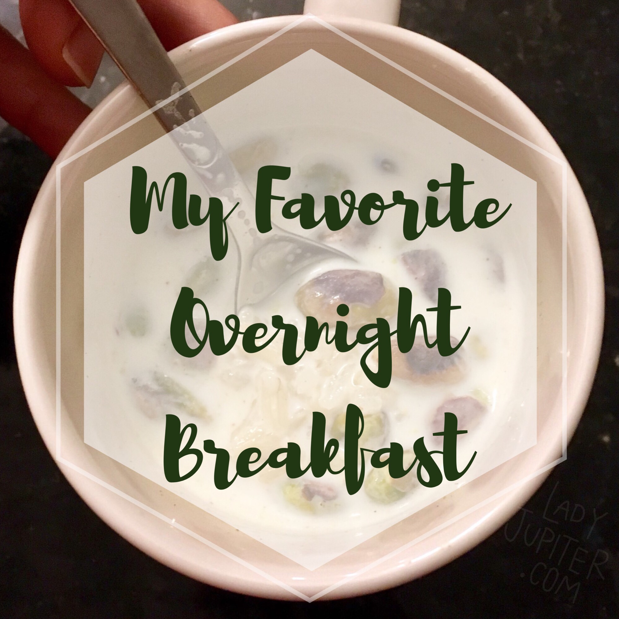 Overnight breakfast matters. Oatmeal gets boring. Here's my favorite single serving mug breakfast #mugbreakfast #indianricepudding #recipe
