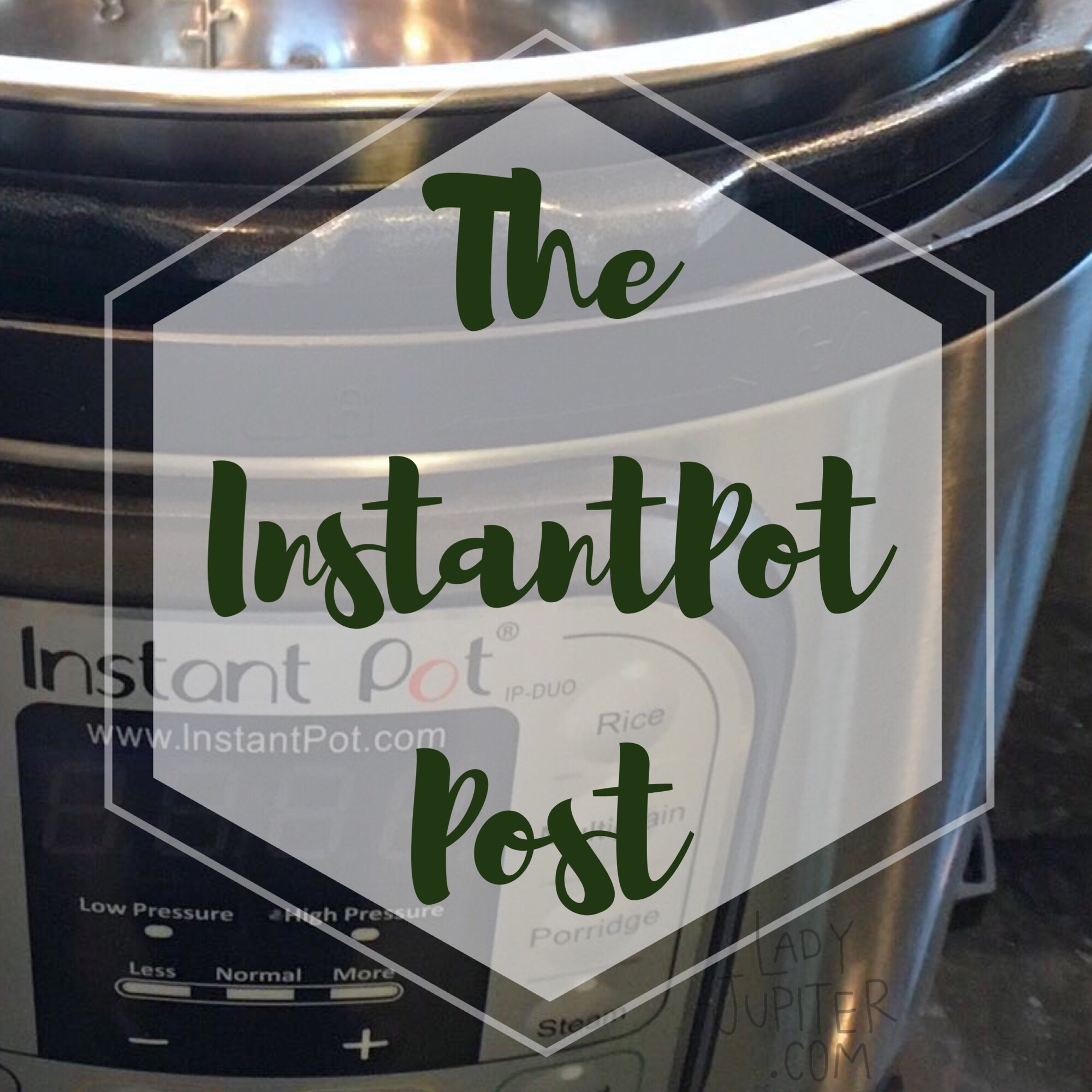 The InstantPot Post -why I love it, plus bonus recipe #InstantPot #chickenrice #goodfood