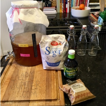 Kombucha Saga has progressed to flavor trials, success! #kombucha #experiments #milblogger