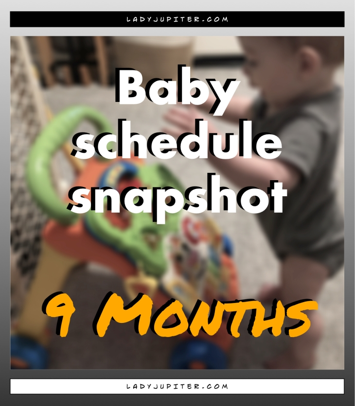 Baby schedule snapshot! Here's an overview of my nine-month old's life. #Baby #NineMonthsOld #BabySchedule #9months