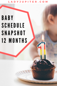 Baby schedule snapshot! Here's an overview of my twelve-month old's life. #Baby #OneYear #BabySchedule #12months #toddler #taby