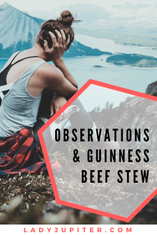 Mmm, Guinness Beef Stew - It's a classic for a reason. Here's my recipe with a public diary entry. #instantpot #guinness #pandemiccooking