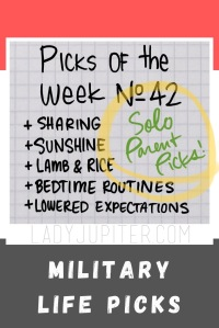 Picks №42 are a reflection upon the part of our military lives that force one parent to do the work of two. #LadyJupiter #PicksOfTheWeek #milspouse #soloparenting #milblogger