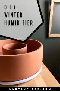 Frizzy hair and sad plants? Low indoor humidity affects everyone in the house. Here's how I keep my plants happy in the winter without special objects or tools. #DIY #humidifier #terracotta #reuse #evaporation