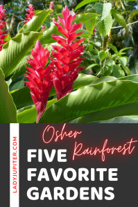 Just sharing my five favorite gardens in the world. Three are on the West Coast, two are in Japan - each one is beautiful and definitely worth a visit. I can't wait to travel and see more! #gardens #fivefaves #travel #LadyJupiter #IndoorRainforest #OsherRainforest #CALacademySF