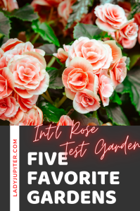 Just sharing my five favorite gardens in the world. Three are on the West Coast, two are in Japan - each one is beautiful and definitely worth a visit. I can't wait to travel and see more! #gardens #fivefaves #travel #LadyJupiter #InternationalRoseTestGarden