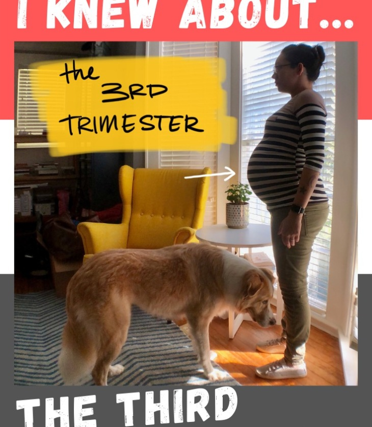What I Wish I Knew about the Third Trimester! This post about the homestretch talks about some things that I learned about on the spot, and a few things that I accidentally got right the first time. #LadyJupiter #WhatIWishIKnew #WIWIK #pregnancy #trimesters #thirdtrimester