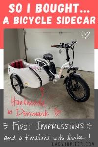 Three months and $3,000 later, I finally have a bespoke sidecar for my kid & ebike! #LadyJupiter #ScandinavianSideBike #WorthIt