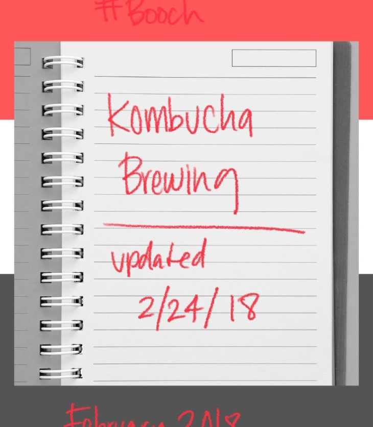 Join me on my kombucha brewing journey - this is when I learned lessons. #LadyJupiter #kombucha #updates